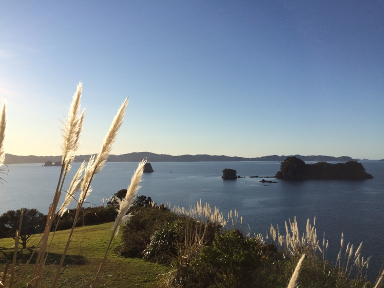 Here is the start of the walk to the Cathedral Cove